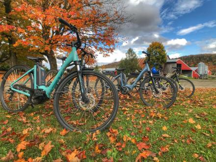 World Class Mountain Bike Trails are the perfect day trip