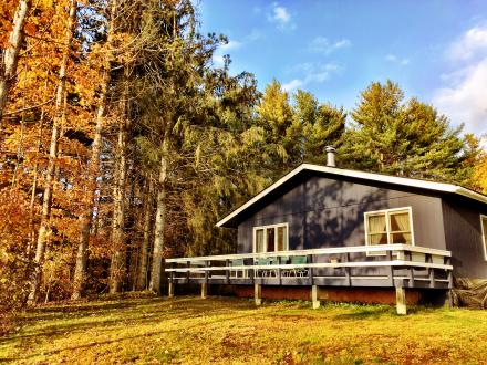 Dog-Friendly Wallace Cabin at Highland Lodge, Vermont Bed and Breakfast